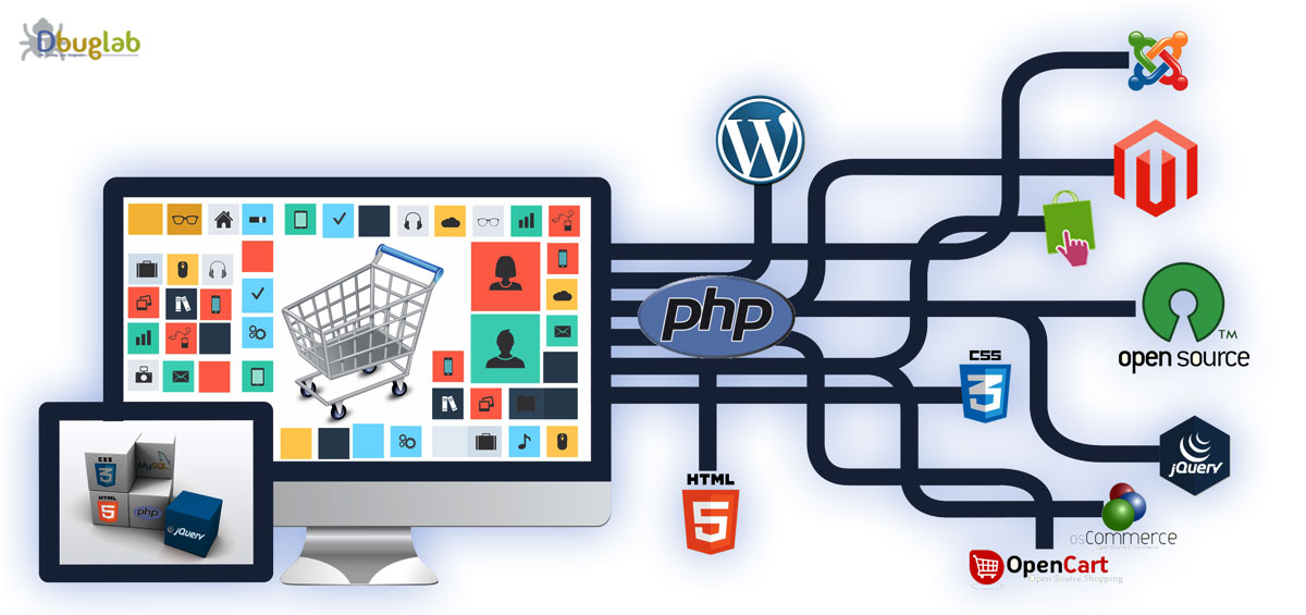 Best Professional Web Development and Web Designing Company